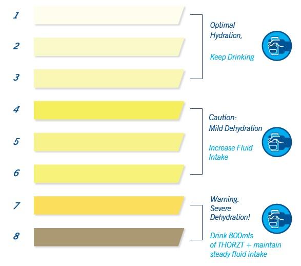 Hydration Testing Urine Colour Ysis